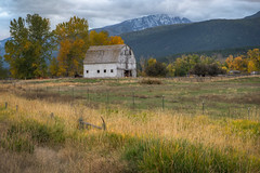 Fall in The Bitterroot Valley (Lane Rushing) Tags: mountain fall barn montana foliage d600 bigmomma bitterrootvalley bitterrootmountains 2470mmf28 herowinner storybookwinner montana2013