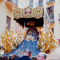 Mater_Dei_Concepcion (10) (ASpepeguti) Tags: españa andalucía spain olympus andalucia concepción andalusia malaga málaga alandalus zd40150mm e620 aspepeguti procesiónmagnamaterdei