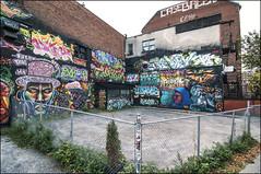 Under Pressure Cour Foufs Aot 2013 DSQ0515 (photofil) Tags: urban streetart graffiti montral cole montreal case urbanart xray smoky aster pac underpressure joek kta johste wuna shalak photofil up2013