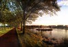 Panoramic Autumn Afternoon (Wameq R) Tags: autumn trees panorama sun sunlight fall netherlands photoshop canon landscape island photography rotterdam afternoon dusk stitching 5d rays hdr hdri 24105 photomatix halsteren cs6 5dmarkiii 5dm3 hdrefex 5dmiii wmpictures