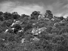 Granite rocks #4 (Franco & Lia) Tags: sardegna blackandwhite bw clouds rocks nuvole sardinia noiretblanc bn granite sw rocce biancoenero blackdiamond mountainscape granito gallura luras flickraward