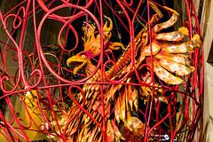 Barcellona-134 (Alessandro Grussu) Tags: barcelona street leica city espaa spain strada fiesta strasse catalonia stadt quarter catalunya festa barcellona catalua spanien spagna gracia citt m9 catalogna espanya katalonien quartiere stadtteil