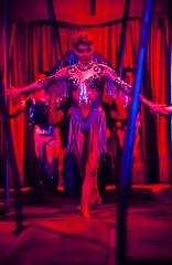 00127_No.086 (Steve Lippitt) Tags: london art unitedkingdom circus performingarts entertainment acrobatics acrobat acrobats circusarts performingart circuses geo:country=unitedkingdom geo:city=london gerrycottlescircus camera:make=nikoncorporation exif:make=nikoncorporation geostate camera:model=nikonf5 exif:model=nikonf5 geo:location=actonpark geo:lat=5150881848 geo:lon=025891022