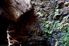 Elephant Falls5
