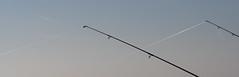 Fishing rods (miguelno) Tags: auto tokyo olympus cadiz mf re f18 cádiz pesca 58mm omd cañas fishingrod topcon kogaku topcor em5 angelruten