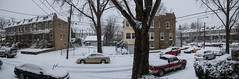 Petworth Panaroma (in Winter) (Bill Herndon) Tags: winter panorama usa snow districtofcolumbia flickr published pentax snowstorm petworth k30 flickrwrherndon