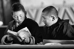 Buddhist students, Mongolia (feijeriemersma) Tags: school boy boys students children temple reading book student education asia university child friendship buddha buddhist monk buddhism books read mongolia monks schools studying monas mongolian buddhistic