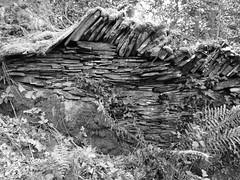 Wales (A4ANGHARAD) Tags: wales lu
