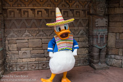 Donald Duck (Disney Dan) Tags: travel summer vacation usa mexico orlando epcot florida character july disney donald disneyworld characters fl wdw waltdisneyworld donaldduck epcotcenter worldshowcase disneycharacters 2015 disneycharacter threecaballeros mickeyfriends disneypictures disneyparks disneypics saludosamigos mexicandonald saludosamigosmovie threecaballerosmovie disneyssaludosamigos disneysthreecaballeros
