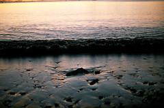 (Abby Billington) Tags: ocean film beach water analog sunrise 35mm canon sand waves ae1 superia grain atlantic 400 program fujifilm analogue