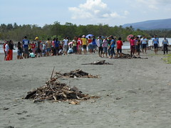 Beach clean-up  and Mangrove planting in Surigao del Norte (coraltriangle2013) Tags: beach coral del triangle philippines cleanup mangrove planting norte surigao ctd 2013