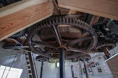 Holgate Windmill, July 2013 (8) (nican45) Tags: wood york slr mill windmill wheel canon yorkshire sigma wideangle machinery ironwork dslr 1020mm gears 1020 shaft holgate 600d stonefloor hwps 1020mmf456exdc holgatewindmill eos600d stonesfloor