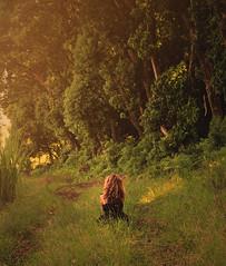 """""""Once upon a time"""" (Emma et la photographie) Tags: road trees light sunset portrait sun sunlight color green art sol nature fairytale forest canon photography soleil model photographer photographie dress robe lumière femme romance arbres onceuponatime romantic imaginary fille canoneos réunion chemin forêt verdure coucherdesoleil blackdress branche artistique iledelaréunion romantique herbes rayondesoleil imaginaire imaginario artportrait contedefée robenoire ilétaitunefois cheveuxblond canoneos600d emmaetlaphotographie"""