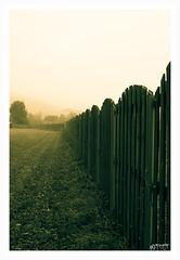 Herbstwiese (TSET0147) Tags: autumn sepia herbst zaun 30mm sigma30mmf14exdchsm