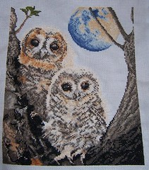 Baby Tawny Owls (SerenielaCrafts) Tags: crossstitch embroidery crafts craft owl owls tapestry tawny