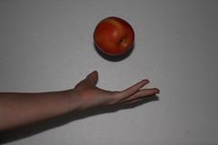 Apple (MichaelaSMillion) Tags: red motion apple fruit fly flying still solitude alone hand arm skin flight swing hanging midair ribbon solitary tossing throw thrown tossed redapple hangingapple swingingapple