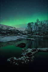 [ ... ice flowers ] (D-P Photography) Tags: cold flower tree ice norway night canon river stars landscape frozen northernlights auroraborealis iceflower longtimeexposure northernnorway dpphotography