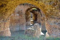 Roman Arch (Patrick Costello) Tags: ruins arch roman tunisia tunis carthage antoninbaths