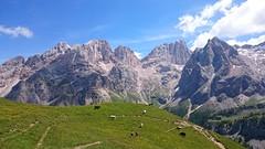 Gran Vernel, Marmolada, Sasso Vernale. Dolomiti (Gabriele Sesana) Tags: