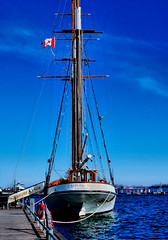 The Empire Sandy (jeffb477) Tags: toronto ontario canada canadian ship sailingship greatlakes harbour history harbourfront winter nikon d7000 scooner