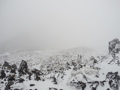 472 - Brouillard au Tongariro Alpine Crossing