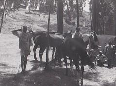 Amhara Family in Ethiopia 1952 (Bury Gardener) Tags: 1950s 1952 oldies old ethiopia africa bw blackandwhite snaps