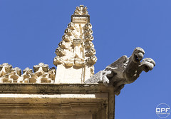 Segovia 015 (Escursso) Tags: castillayleon segovia spain