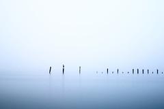 Enclosed (Marty Friedel) Tags: bay still victoria beach landscape melbourne rocks filters australia water sky fog sticks longexposure werribeesouth clouds au