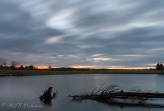Peaceful Dawn (Rick Smotherman) Tags: wood longexposure trees winter sky nature water field leaves clouds sunrise canon landscape outdoors morninglight pond january overcast 7d orangesky cloudysky buschwildlife canon7d canon1585mmlens