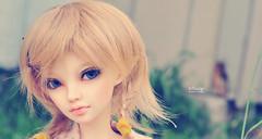 MNF Siean (Eludys) Tags: doll bjd fairyland msd mnf faceup minifee siean eludys
