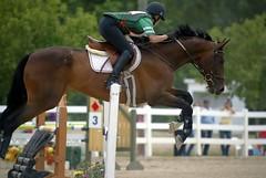 Sunny Skies at Silverwood Farm's Horse Trials (Tackshots) Tags: equestrian eventing horsetrials equestrienne camplake silverwooffarm
