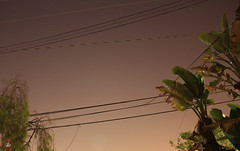 City View (Naive Photography) Tags: pictures city trees sky night stars photography skies photos space citylife thesky longbeach wires pollution nightlife telephonepoles electricitypoles ghetto lb lbc clearskies nightskies orangeskies theghetto naivephotos