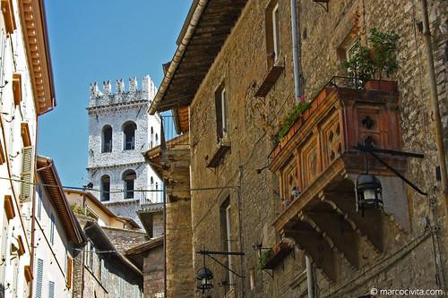 Assisi - 2013
