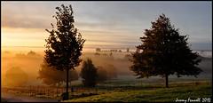 Early morning at Ashton Court (zolaczakl) Tags: trees mist sunrise fence bristol golden october earlymorning 2012 parkland goldenlight ashtoncourtestate jeremyfennell