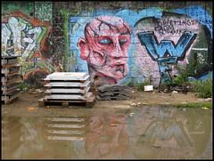 Kln-Ehrenfeld: Greetings from Denmark (wwwuppertal) Tags: streetart face germany puddle deutschland graffiti gesicht head kln nrw nordrheinwestfalen rheinland kopf klnehrenfeld ehrenfeld pftze northrhinewestphalia northrinewestphalia trmmergrundstck canonixus80is greetingsfromdenmark