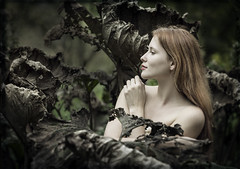 dame de lotus (biancavanderwerf) Tags: dame lady girl woman model nude naked bloot leafs bladeren leaf death dor brown green redhead redhair portrait profile bianca nature rosalinde