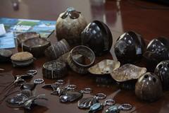Nada del coco se desperdicia. Hasta la cáscara se usa para hacer artesanías. Crédito: Desmond Brown/IPS. (Agencia de Noticias Inter Press Service) Tags: guyana cocos artesanías cambioclimático cáscara