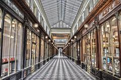 Paris : la galerie Vero Dodat