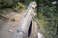 The Morning Walk |  (francisling) Tags: morning nepal zeiss 35mm t walk sony cybershot himalaya porter sherpa tyangboche sonnar  tengboche   rx1    dscrx1