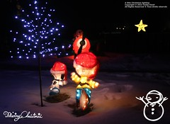A little Christmas Light (Teddy Kwok) Tags: christmas blue light color tree star purple decoration merry multicolored snoppy lighing