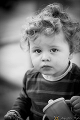 Cookies and milk (Jacqueline Boyle) Tags: boy hair milk eyes toddler cookie curly pensive
