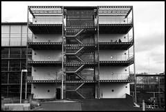 (Louis de Leeuw) Tags: leica white black film canon photography 50mm shoot ishootfilm m 150 summicron developer plus hp5 12 agfa rodinal development ilford m6 canoscan adox 8800f adolux filmvision