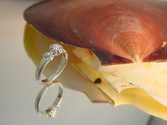 婚約者様の誕生花「椿」をモチーフにしたダイヤモンドのエンゲージリング。 (jewelrycraft.kokura) Tags: 指輪 椿 リング milgrain ダイヤモンド ミル ゆびわ ミルグレイン 桜 ダイヤ ミル