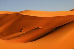 Folds of Life #2 (stedef) Tags: travel sand desert dune morocco journey marocco duna viaggio deserto sabbia merzouga oltusfotos mygearandme mygearandmepremium mygearandmebronze infinitexposure