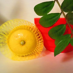 yellow, red, green (sonyacita) Tags: red green leaves yellow bag square leaf lemon bright mesh vivid bowl utata:project=ip193