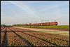 16-04-2014, Hillegom, DBS 1615 + Staaltrein (Koen langs de baan) Tags: