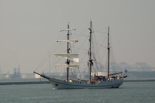 holland boat sailing artemis hookofhollandferry