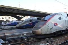 SNCF TGV 613 - 731 - 204 (Will Swain) Tags: travel paris france train de french europe lyon gare transport july rail railway des 9th railways 204 franais socit parisian tgv 731 fer sncf nationale 2015 613 chemins