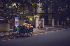 Street (Raja V) Tags: chennai photowalk thiruvanmiyur street tendercoconut vendor india