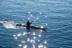 Enjoying spring (Maria Eklind) Tags: kayak sun signsofspring reflection cityview malmö vårtecken kajak water spegling sweden outdoor västrahamnen malmoe sunreflection spring skånelän sverige se